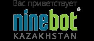ninebot-loader